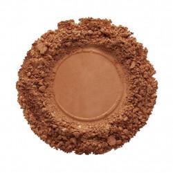 CMP381-Nutmeg